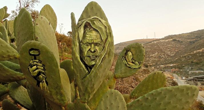 cactus1-ahmad yaseen
